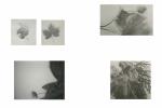 7-E-8-feuilles-impaginate-solo-se-esiste-una-pagina-in-più-