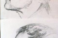 43-corsi-pittura-sartori423